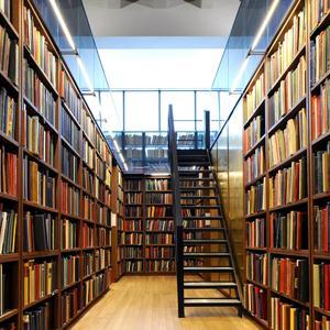 Библиотеки Домбая