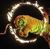 Цирки в Домбае
